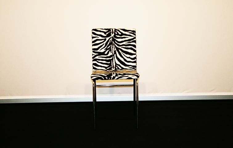 sedia-zebrata-noleggio